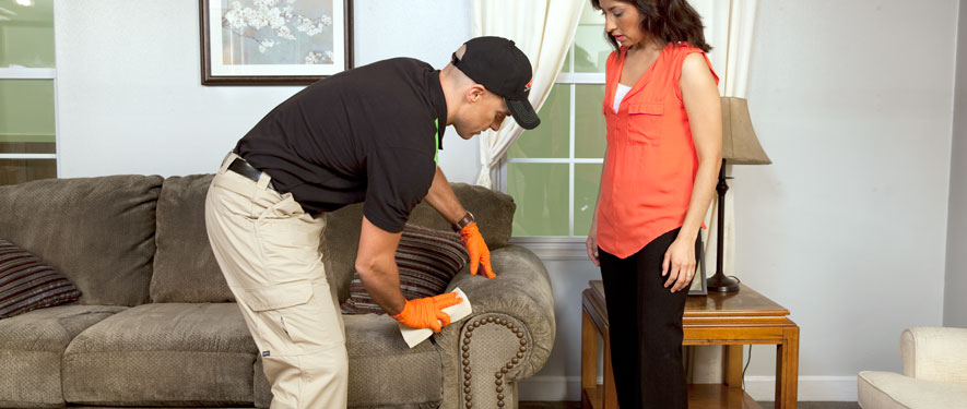Jersey City, NJ carpet upholstery cleaning
